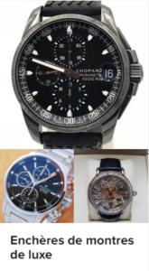 acheter une montre aux enchères