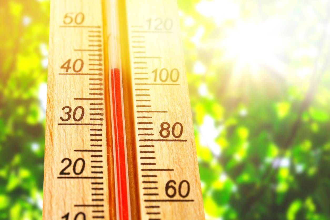 canicule hyperthermie