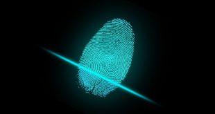 Internet : protéger votre identité numérique